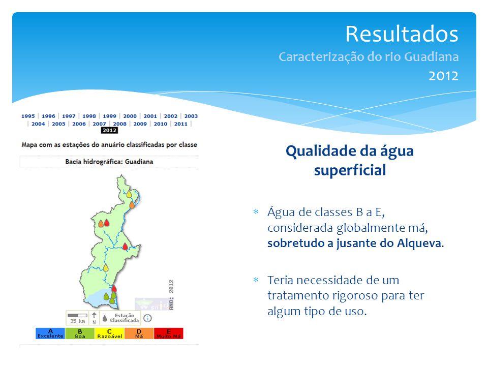Resultados Caracterização do rio Guadiana 2012 Qualidade da água superficial  Água de classes B a E, considerada globalmente má, sobretudo a jusante