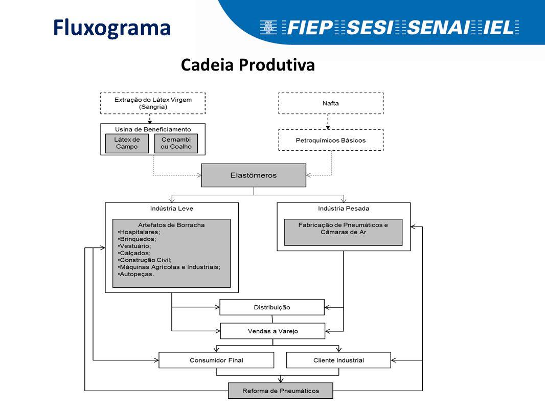 Fluxograma Cadeia Produtiva