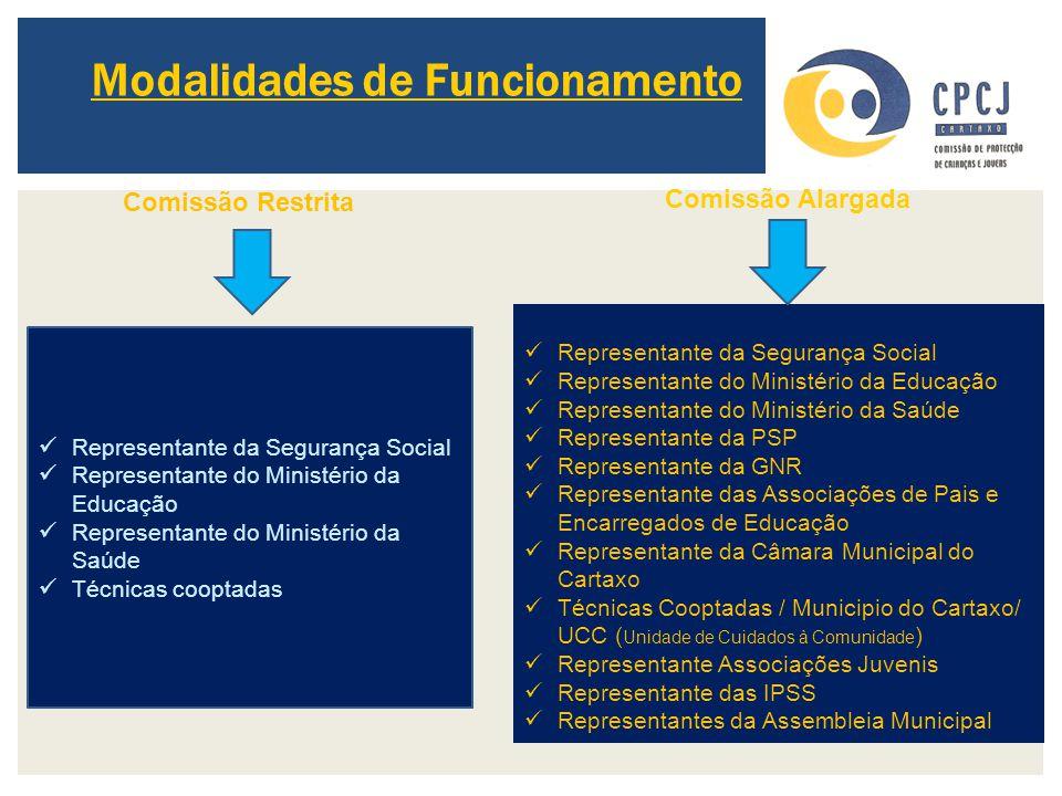 Modalidades de Funcionamento Representante da Segurança Social Representante do Ministério da Educação Representante do Ministério da Saúde Técnicas c