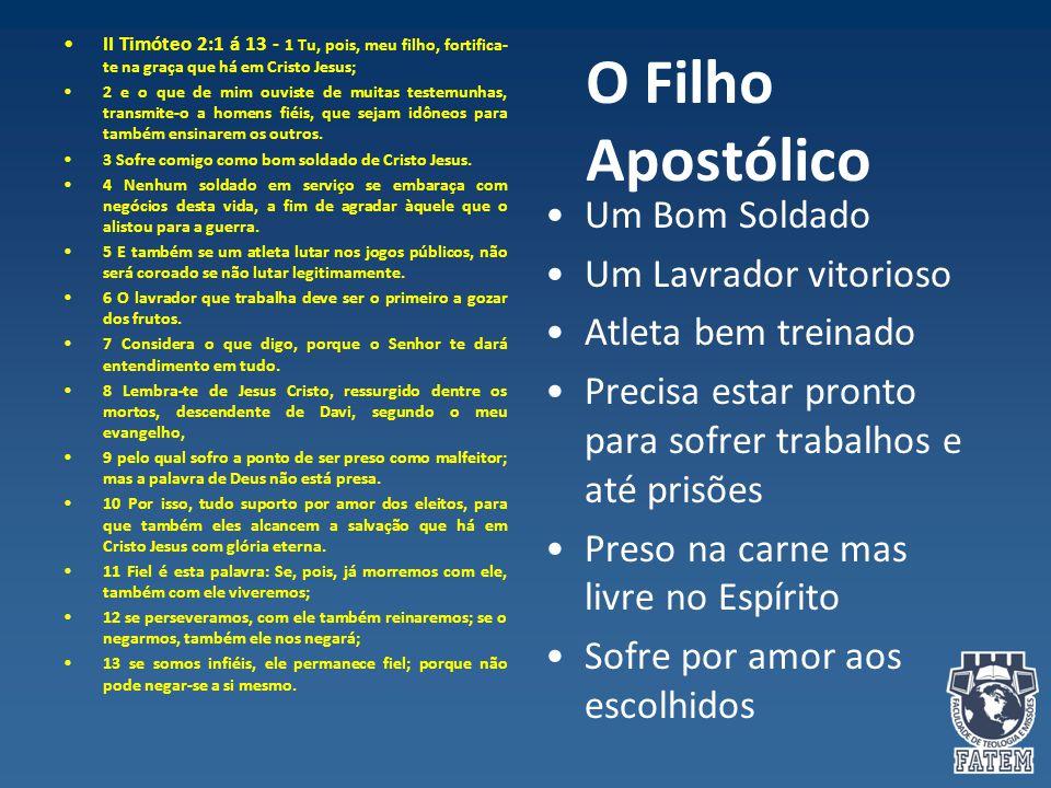 O Filho Apostólico II Timóteo 2:1 á 13 - 1 Tu, pois, meu filho, fortifica- te na graça que há em Cristo Jesus; 2 e o que de mim ouviste de muitas test