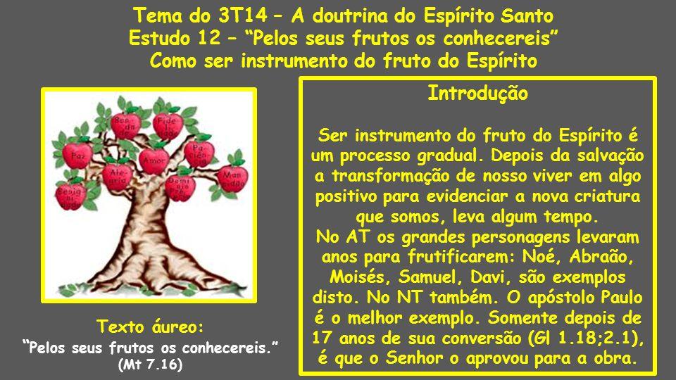 Introdução Ser instrumento do fruto do Espírito é um processo gradual. Depois da salvação a transformação de nosso viver em algo positivo para evidenc
