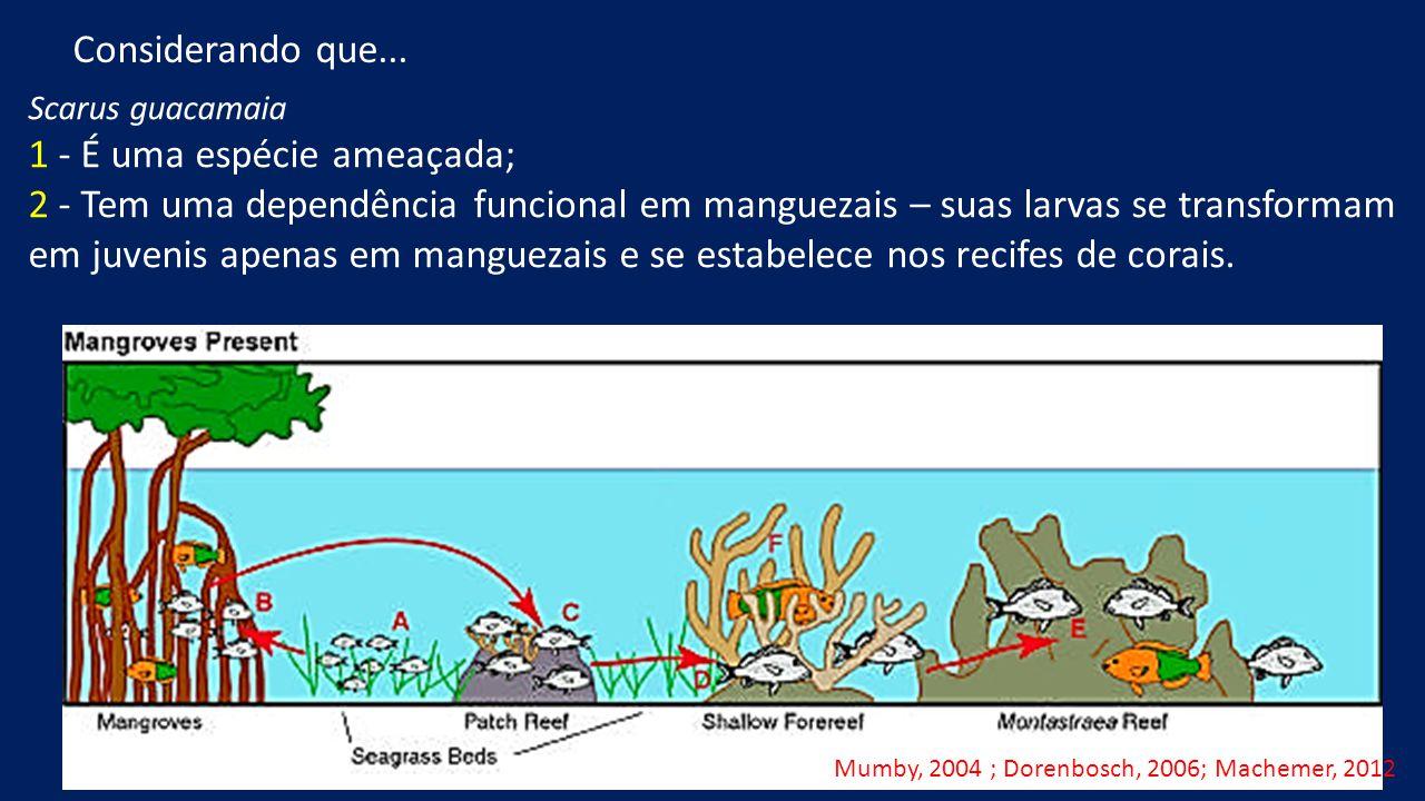 Scarus guacamaia 1 - É uma espécie ameaçada; 2 - Tem uma dependência funcional em manguezais – suas larvas se transformam em juvenis apenas em manguezais e se estabelece nos recifes de corais.