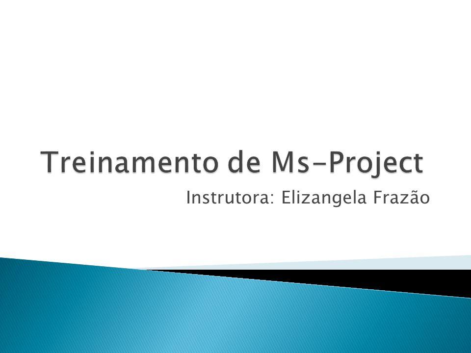  O Project divide as fases de planejamento e execução com a Linha de base (Baseline).