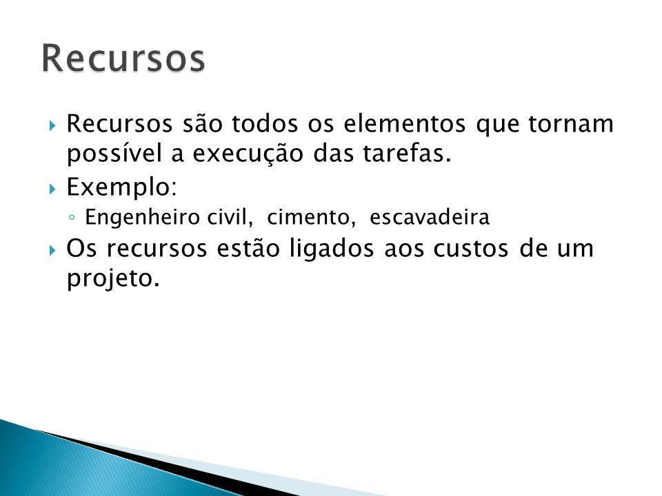  Há 3 tipos de recursos no Project: ◦ Trabalho: custo calculado normalmente em horas, responsáveis pela execução do trabalho do Projeto ◦ Material: Custo calculado pela quantidade, são os artigos de consumo ◦ Custo: custos financeiros