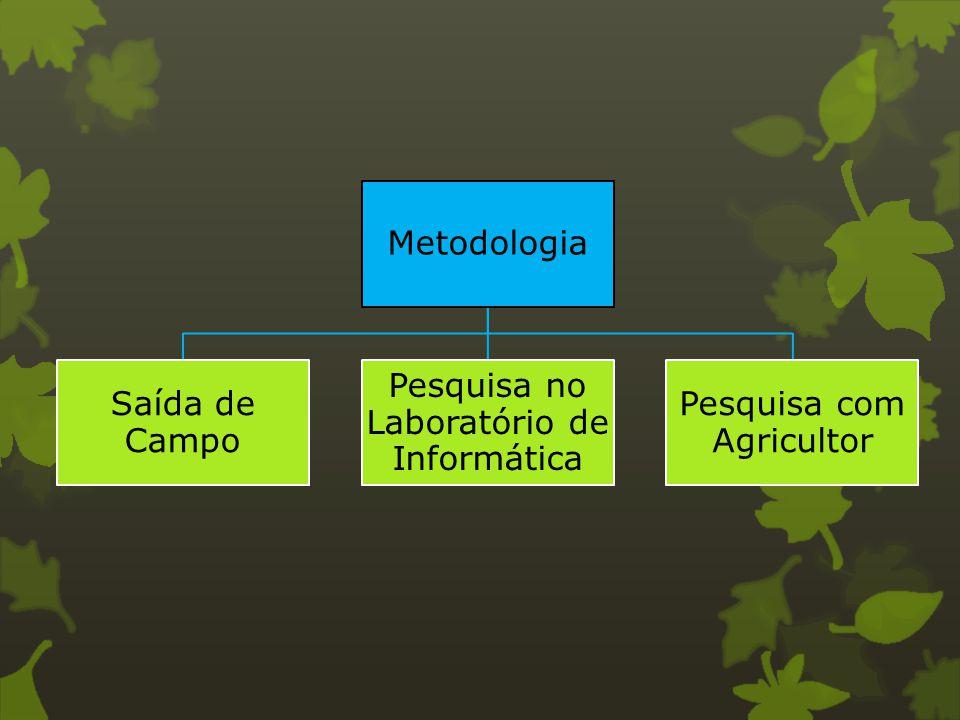 Metodologia Saída de Campo Pesquisa no Laboratório de Informática Pesquisa com Agricultor
