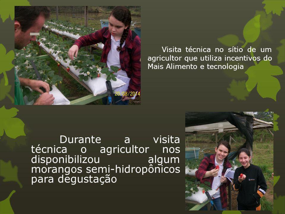 Visita técnica no sítio de um agricultor que utiliza incentivos do Mais Alimento e tecnologia Durante a visita técnica o agricultor nos disponibilizou