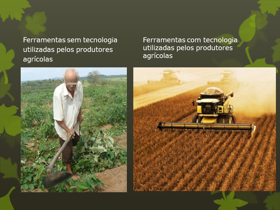 Ferramentas sem tecnologia utilizadas pelos produtores agrícolas Ferramentas com tecnologia utilizadas pelos produtores agrícolas