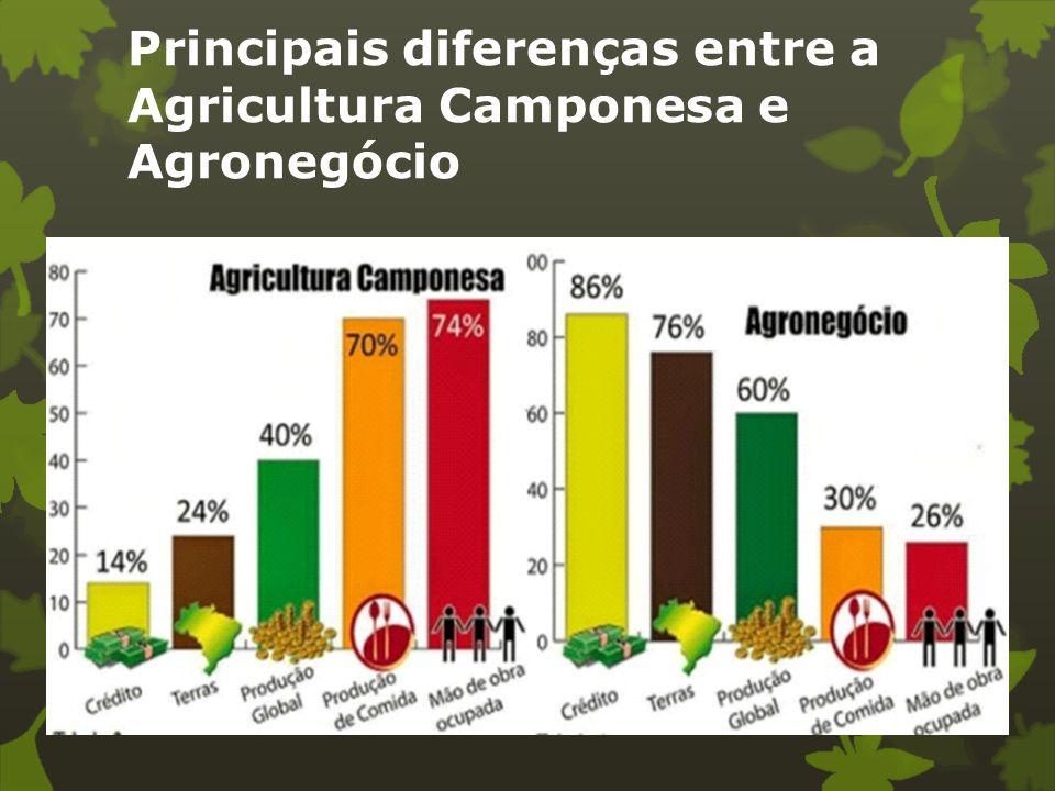 Principais diferenças entre a Agricultura Camponesa e Agronegócio