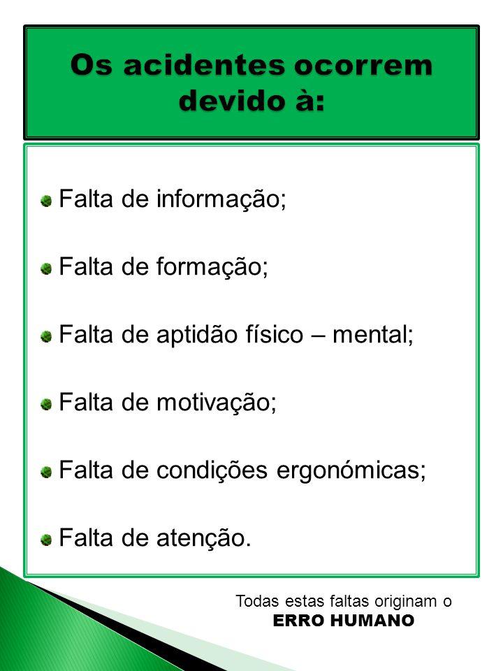 Falta de informação; Falta de formação; Falta de aptidão físico – mental; Falta de motivação; Falta de condições ergonómicas; Falta de atenção.