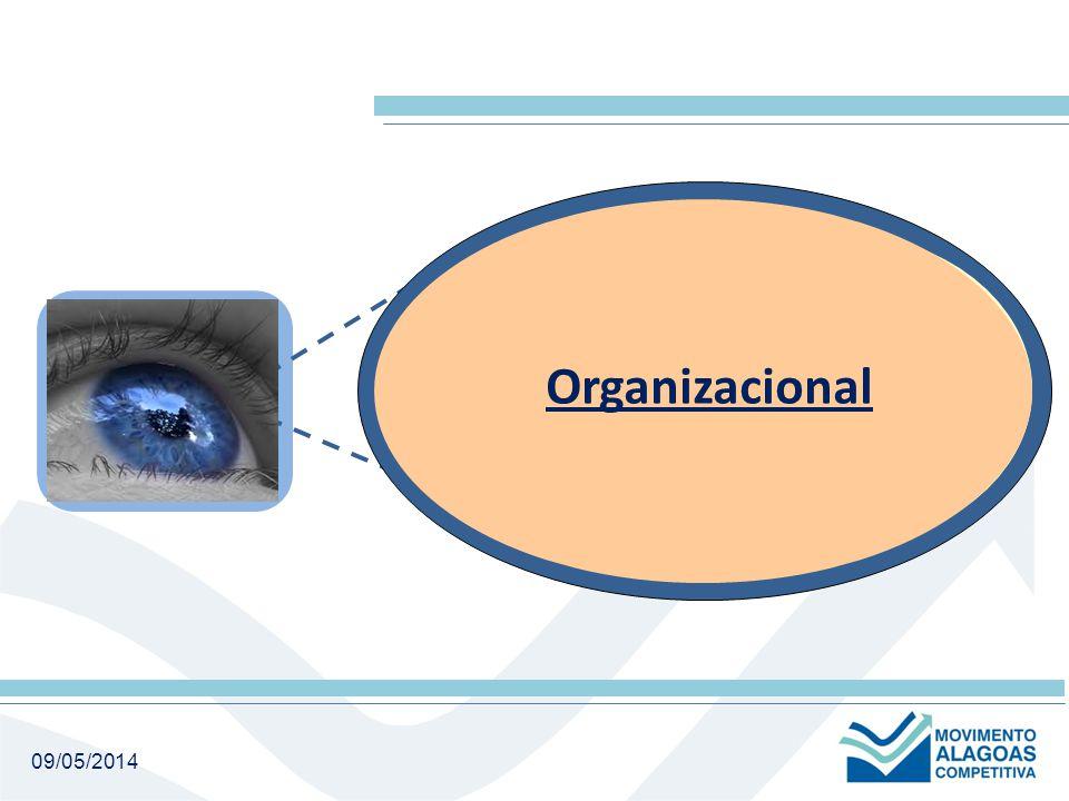 09/05/2014 Sistêmico Estrutural Organizacional