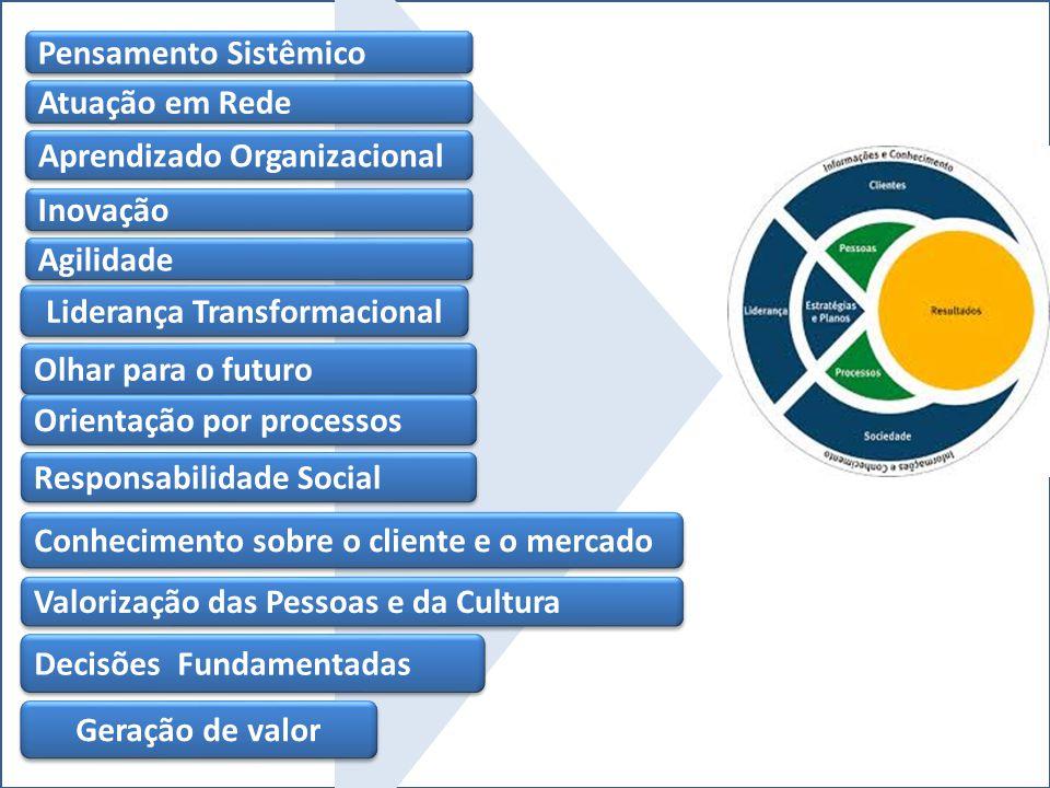 Pensamento Sistêmico Atuação em Rede Aprendizado Organizacional Inovação Agilidade Liderança Transformacional Olhar para o futuro Conhecimento sobre o cliente e o mercado Responsabilidade Social Valorização das Pessoas e da Cultura Decisões Fundamentadas Orientação por processos Geração de valor