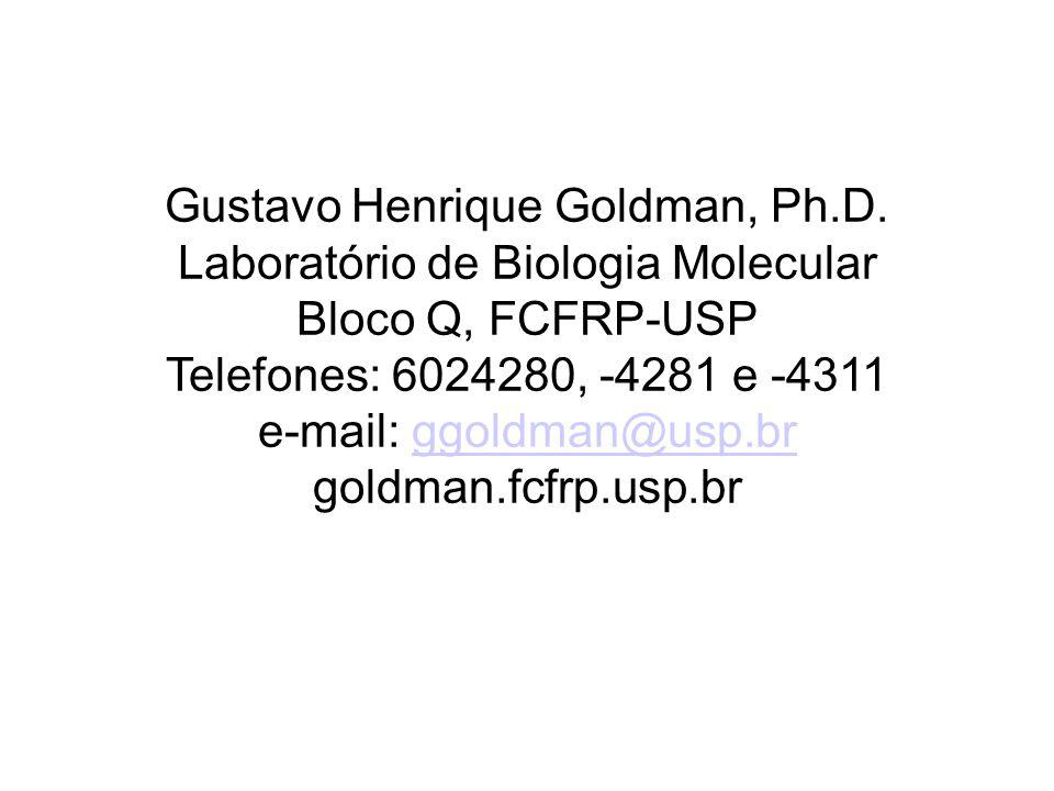 Gustavo Henrique Goldman, Ph.D. Laboratório de Biologia Molecular Bloco Q, FCFRP-USP Telefones: 6024280, -4281 e -4311 e-mail: ggoldman@usp.brggoldman