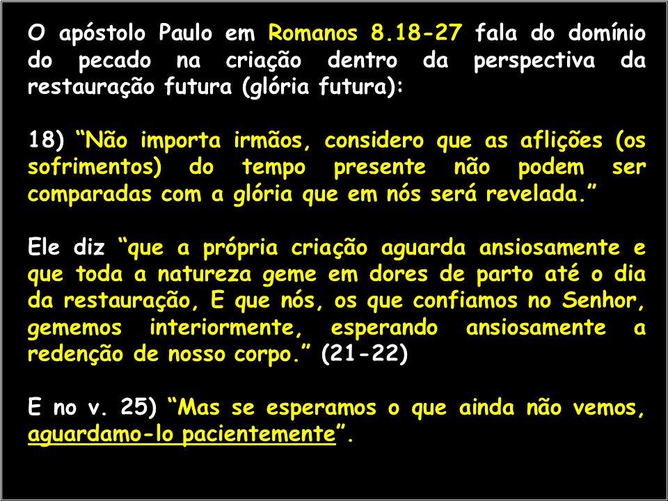 """O apóstolo Paulo em Romanos 8.18-27 fala do domínio do pecado na criação dentro da perspectiva da restauração futura (glória futura): 18) """"Não importa"""