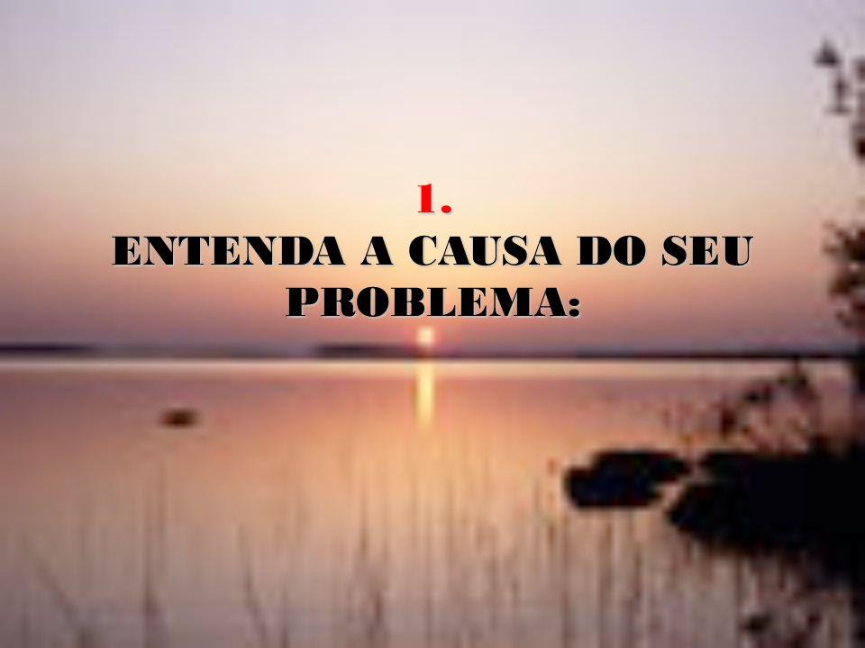 1. ENTENDA A CAUSA DO SEU PROBLEMA:
