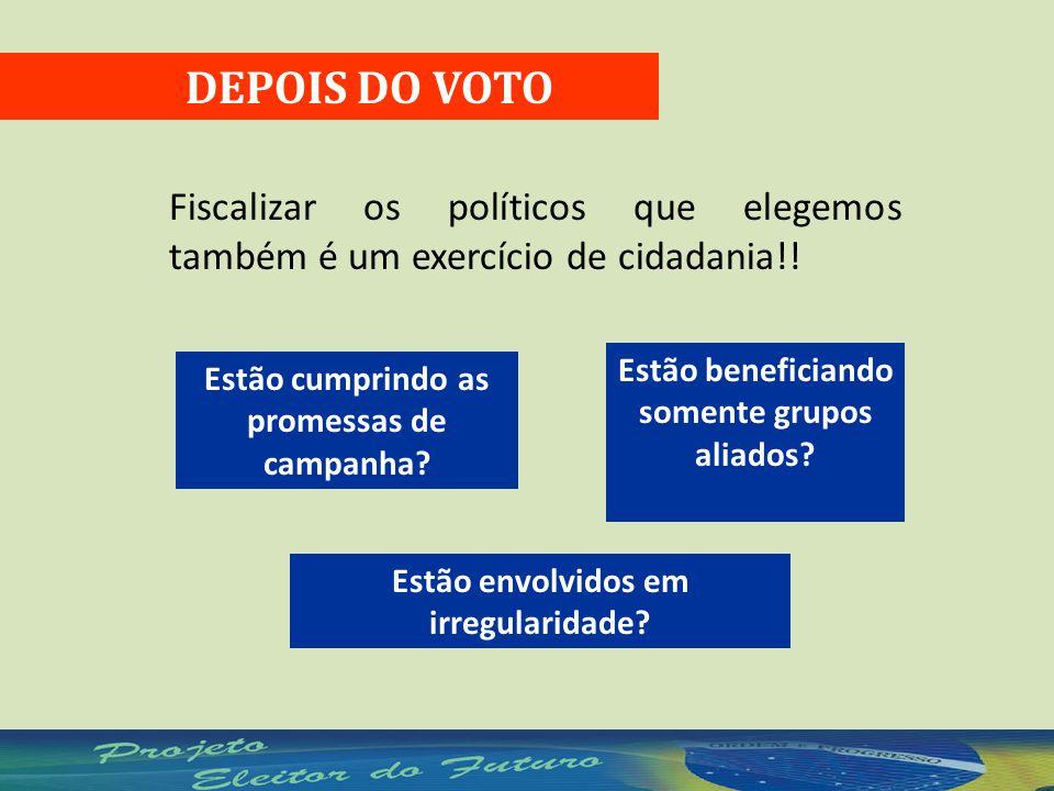 DEPOIS DO VOTO Fiscalizar os políticos que elegemos também é um exercício de cidadania!.