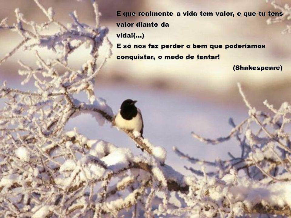 que realmente a vida tem valor, e que tu tens valor diante da vida!(...) E só nos faz perder o bem que poderíamos conquistar, o medo de tentar.