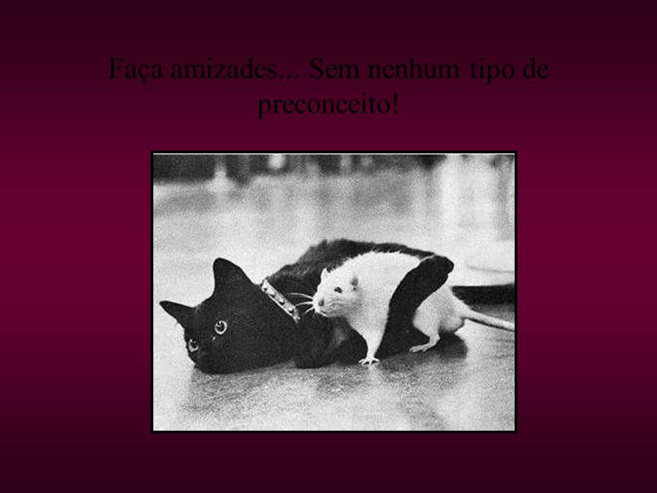 Faça amizades... Sem nenhum tipo de preconceito!