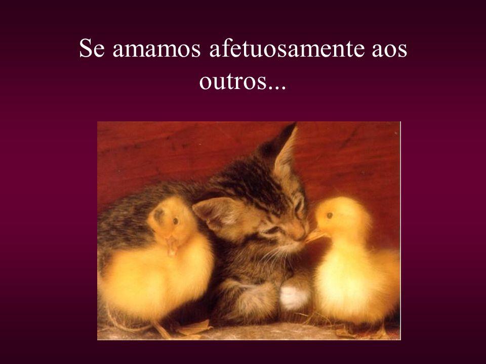 Se amamos afetuosamente aos outros...