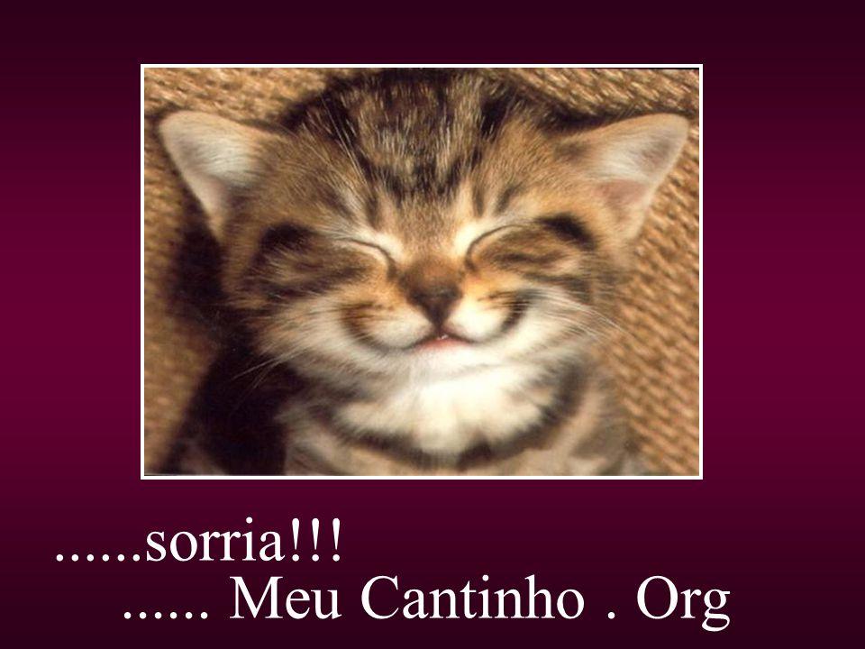 ......sorria!!!...... Meu Cantinho. Org