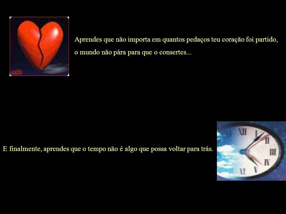 Aprendes que não importa em quantos pedaços teu coração foi partido, o mundo não pára para que o consertes...