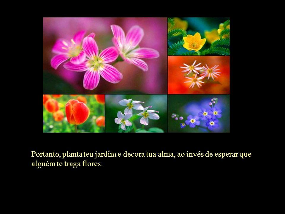 Portanto, planta teu jardim e decora tua alma, ao invés de esperar que alguém te traga flores.