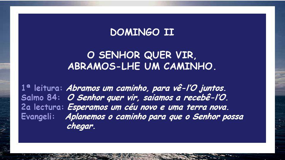 DOMINGO II O SENHOR QUER VIR, ABRAMOS-LHE UM CAMINHO.