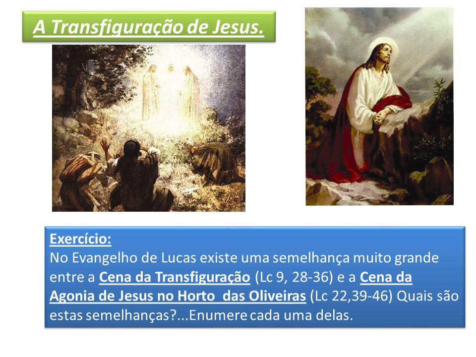 Exercício: No Evangelho de Lucas existe uma semelhança muito grande entre a Cena da Transfiguração (Lc 9, 28-36) e a Cena da Agonia de Jesus no Horto das Oliveiras (Lc 22,39-46) Quais são estas semelhanças?...Enumere cada uma delas.