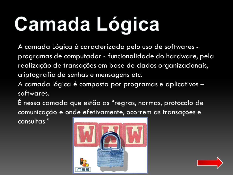 A camada Lógica é caracterizada pelo uso de softwares - programas de computador - funcionalidade do hardware, pela realização de transações em base de
