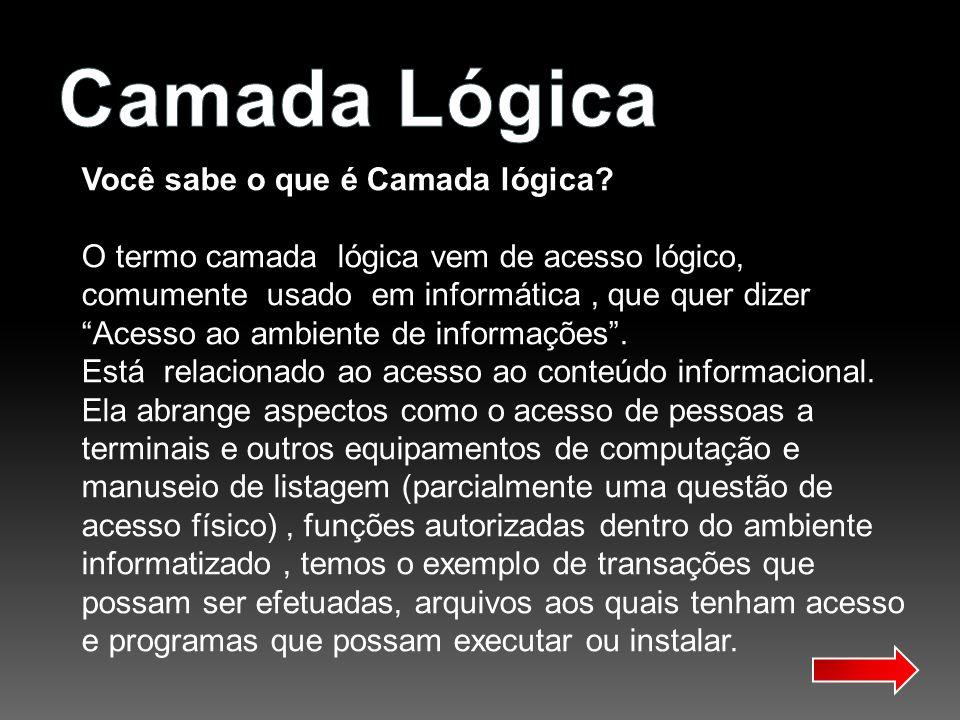 A camada Lógica é caracterizada pelo uso de softwares - programas de computador - funcionalidade do hardware, pela realização de transações em base de dados organizacionais, criptografia de senhas e mensagens etc.