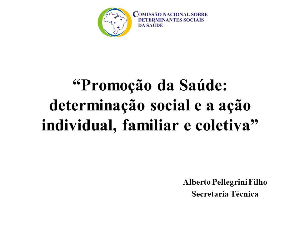 """""""Promoção da Saúde: determinação social e a ação individual, familiar e coletiva"""" Alberto Pellegrini Filho Secretaria Técnica"""
