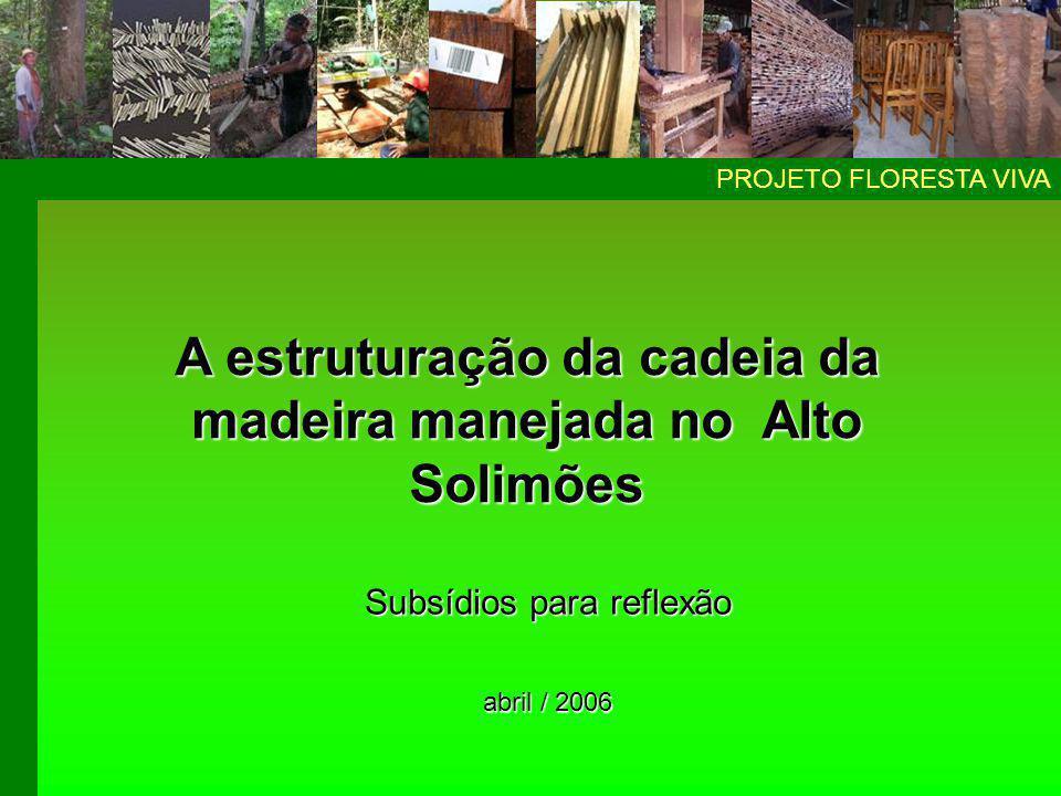 A reflexão exposta nessa apresentação foi desenvolvida pelo projeto Floresta Viva para subsidiar o processo de estruturação da cadeia produtiva do Alto Solimões.