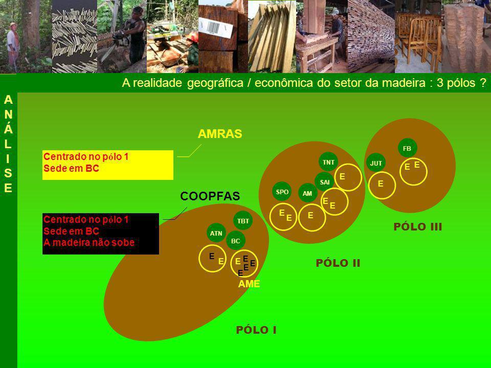 A realidade geográfica / econômica do setor da madeira : 3 pólos .