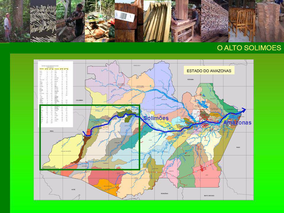 9 municípios ALTO SOLIMÕESALTO SOLIMÕES ATN BC TBT SPO SAI AM TNT JUT FB