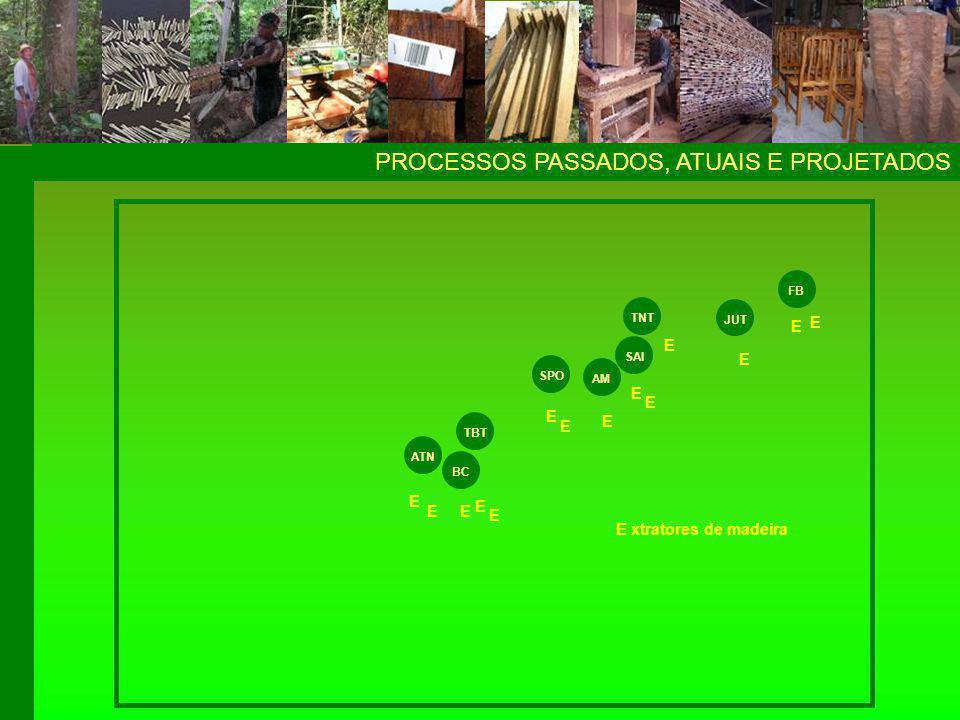 1993 – criação da AMRAS PROCESSOSPROCESSOS ATN BC TBT SPO SAI AM TNT JUT FB E E E E E E E E E E E E E AMRAS Associação dos Madeireiros e Reflorestadores do Alto Solimões E