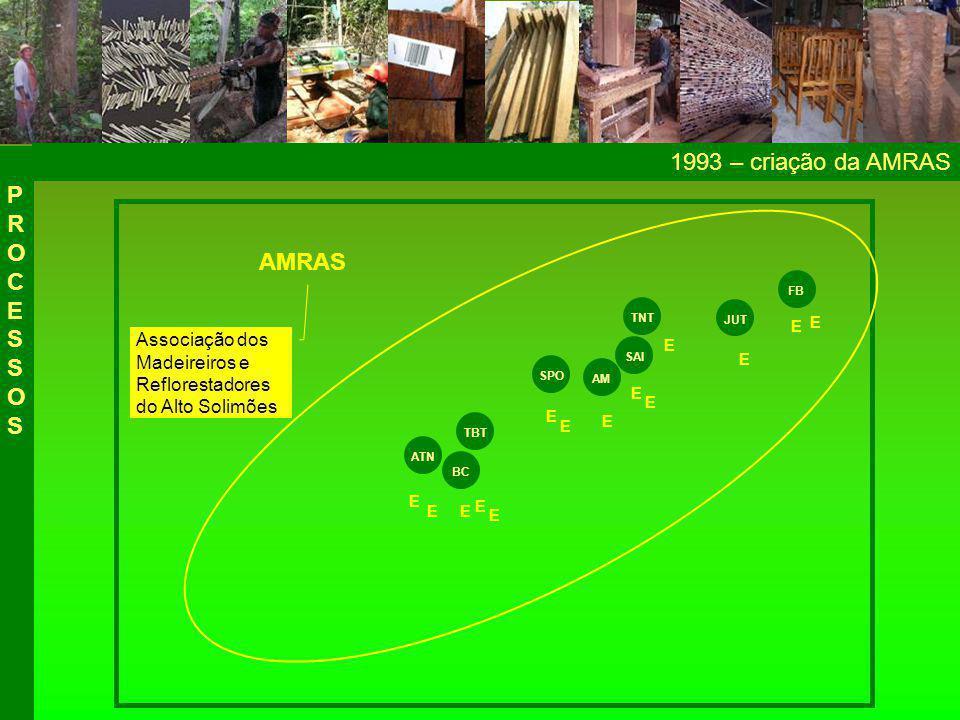2006 – criação da COOPAS PROCESSOSPROCESSOS ATN BC TBT SPO SAI AM TNT JUT FB E E E E E E E E E E E E E E AMRAS COOPFAS E E Cooperativa de Produção Florestal do Alto Solimões