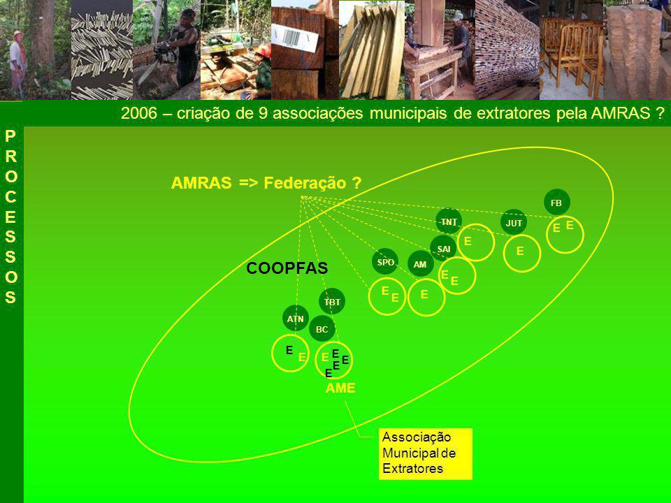 2006 – criação de 9 associações municipais de extratores pela AMRAS .