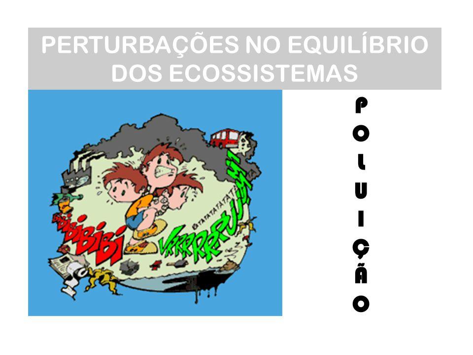PERTURBAÇÕES NO EQUILÍBRIO DOS ECOSSISTEMAS POLUIÇÃOPOLUIÇÃO