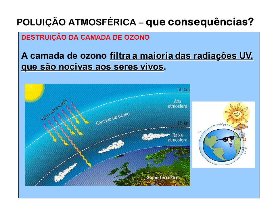 DESTRUIÇÃO DA CAMADA DE OZONO filtra a maioria das radiações UV, que são nocivas aos seres vivos A camada de ozono filtra a maioria das radiações UV, que são nocivas aos seres vivos.