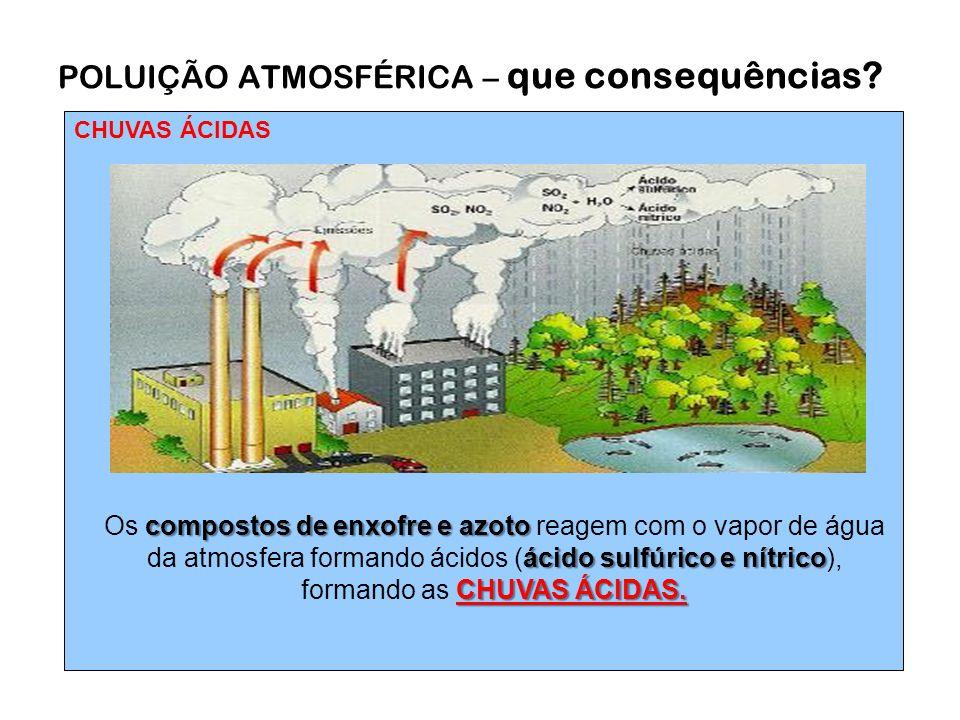 CHUVAS ÁCIDAS POLUIÇÃO ATMOSFÉRICA – que consequências.