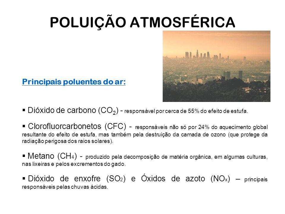 POLUIÇÃO ATMOSFÉRICA Principais poluentes do ar:  Dióxido de carbono (CO 2 ) - responsável por cerca de 55% do efeito de estufa.  Clorofluorcarbonet