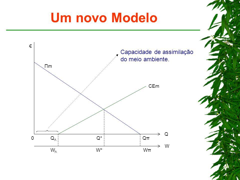 Um novo Modelo Q*Q*QπQπ Q QAQA ΠmΠm CEm WAWA W*WπWπ W Capacidade de assimilação do meio ambiente. € 0