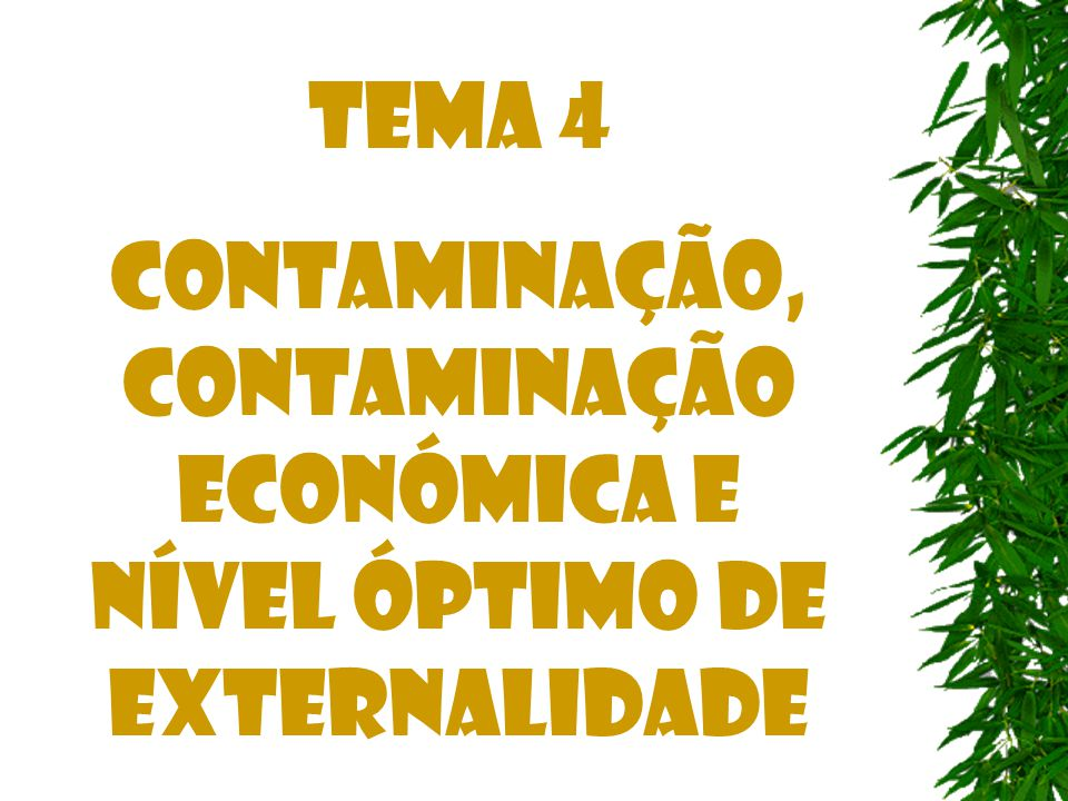 Tema 4 CONTAMINAÇÃO, CONTAMINAÇÃO Económica e nível óptimo de externalidade