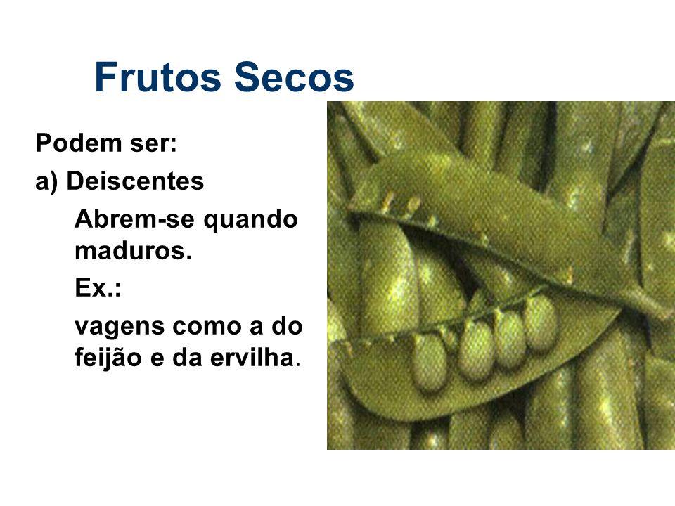 Frutos Secos Podem ser: a) Deiscentes Abrem-se quando maduros. Ex.: vagens como a do feijão e da ervilha.