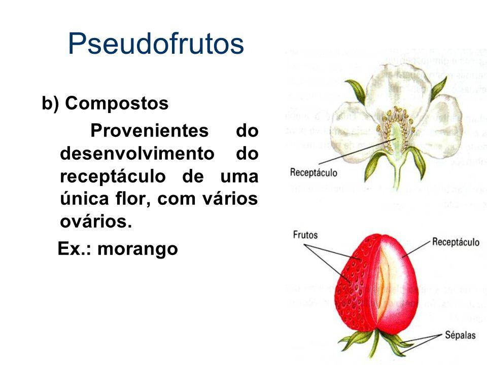 Pseudofrutos b) Compostos Provenientes do desenvolvimento do receptáculo de uma única flor, com vários ovários. Ex.: morango
