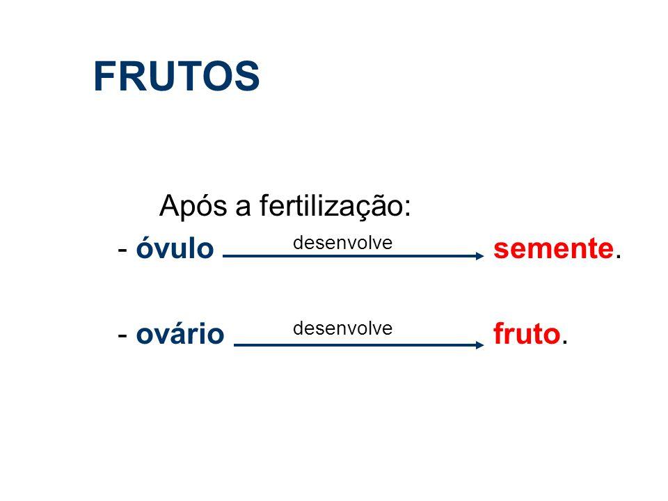 FRUTOS Após a fertilização: - óvulo desenvolve semente. - ovário desenvolve fruto.