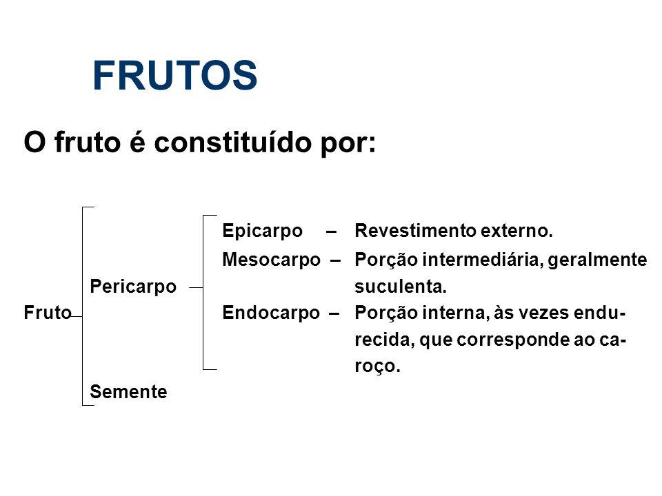 FRUTOS O fruto é constituído por: Epicarpo – Revestimento externo. Mesocarpo –Porção intermediária, geralmente Pericarpo suculenta. Fruto Endocarpo –