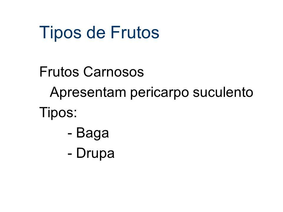 Tipos de Frutos Frutos Carnosos Apresentam pericarpo suculento Tipos: - Baga - Drupa