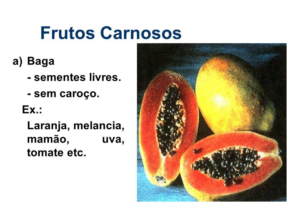 Frutos Carnosos a) Baga - sementes livres. - sem caroço. Ex.: Laranja, melancia, mamão, uva, tomate etc.