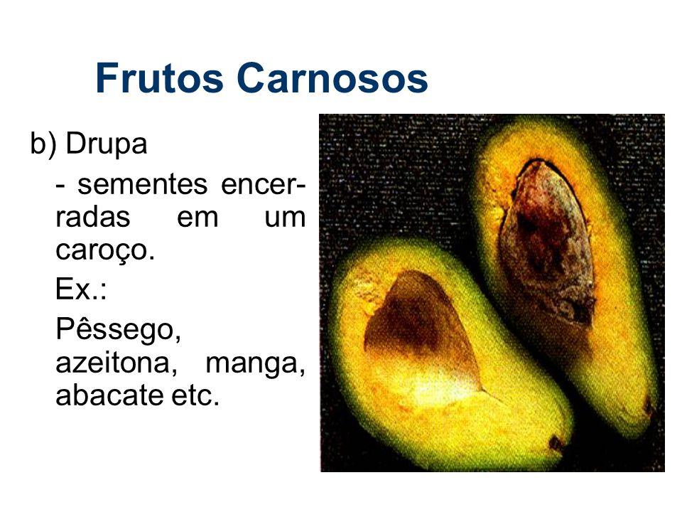 Frutos Carnosos b) Drupa - sementes encer- radas em um caroço. Ex.: Pêssego, azeitona, manga, abacate etc.