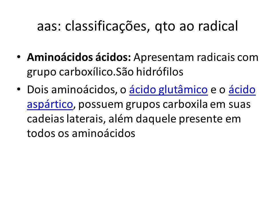 aas: classificações, qto ao radical Aminoácidos ácidos: Apresentam radicais com grupo carboxílico.São hidrófilos Dois aminoácidos, o ácido glutâmico e